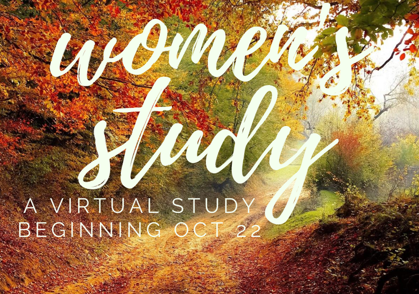 SC | Women's Virtual Bible Study - The Road Back to You